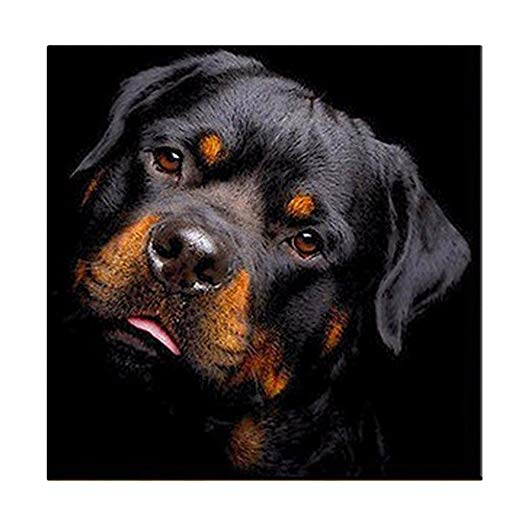 Full Drill DIY Black Dog Painting Crystal 5D Diamond Rhinestone Cross Crafts Stitch Kit Home Decoration